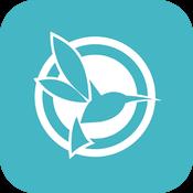 blackvue-logo