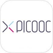 Picooc Big Pro: Умные весы